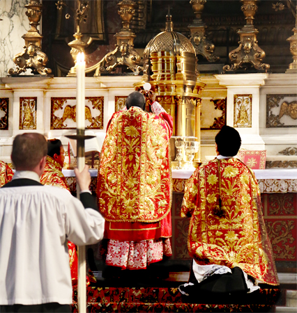 Cardinal Sarah celebrates a Novus Ordo Mass in the London Oratory, July 2016. Photo credit: flickr.com/Lawrence OP